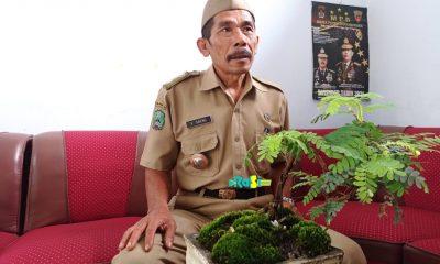 Desa Rejomulyo Kembangkan Ikan Lele Sebagai Produk Unggulan.
