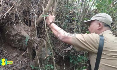 Temukan Bata Ukuran Raksasa, Warga Desa Sidomulyo Duga Ada Peninggalan Sejarah
